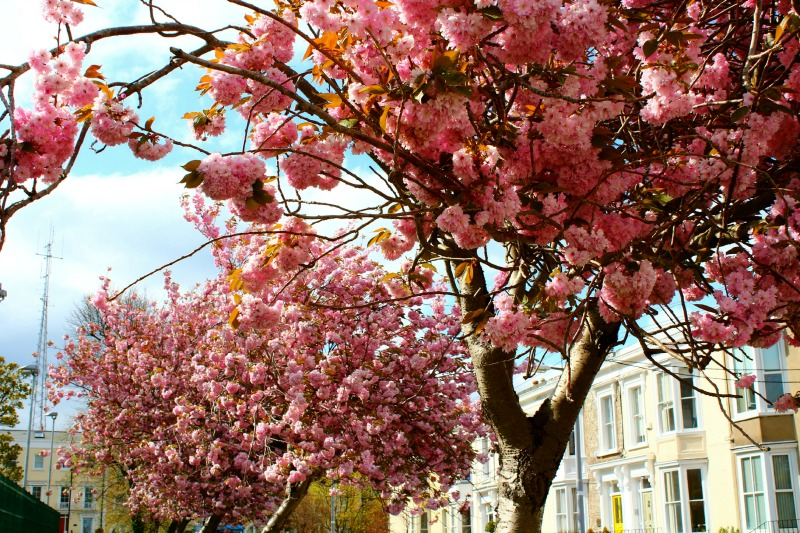 Dublin during Spring time